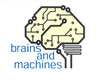 Brains and Machines logo