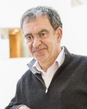 Tomaso A. Poggio